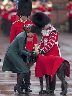 Duchess of Cambridge presents shamrock to the mascot of the 1st Battalion Irish Guards