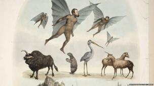 An old drawing of human-like apes with bat wings