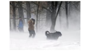 A woman and her dog walk during a heavy snow