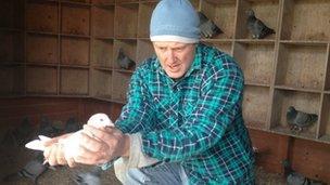 Professional pigeon fancier Jeremy Davies in his Worcestershire loft