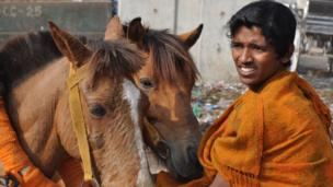 Handler of horses in Dhaka