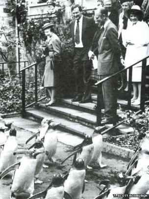 Queen Elizabeth II and the Duke of Edinburgh watching the penguins parade