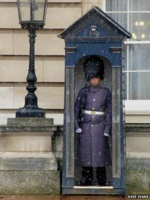 A Buckingham Palace guard in the snow