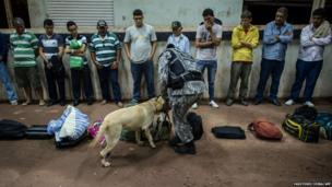 A Brazilian national force agent and his sniffer dog inspect bags