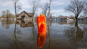 A rubber glove being used as a marker bobs in the water after flooding in Fox Lake, Illinois