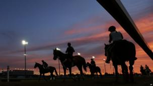 Horses get ready for their morning workouts ahead of the Kentucky Derby at Churchill Downs on 2 May 2013