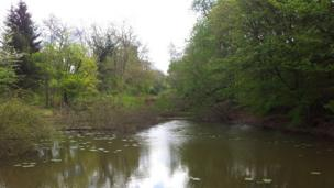 One of the ponds to be restored at Hagley Hall, Worcestershire