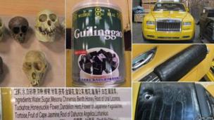 Monkey skulls, tortoise jelly, Rolls-Royce, alligator skin detail on car, more alligator skin, ingredients list of tortoise jelly (clockwise from top left)