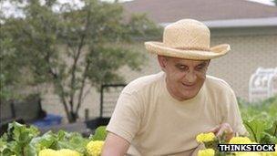 Old man in garden