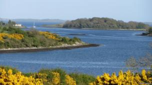 Strangford Lough - by Robert Keatley
