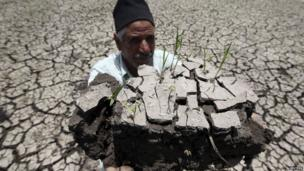 A farmer in Egypt holding up a patch of dry soil - Tuesday 4 June 2013