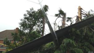 A light aircraft that crash landed in a back garden in Cheltenham