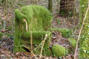 Chair covered in moss