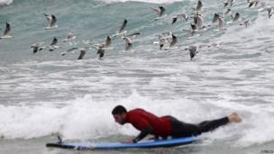 Seagulls fly behind Alex Cuthbert as he takes to the waves