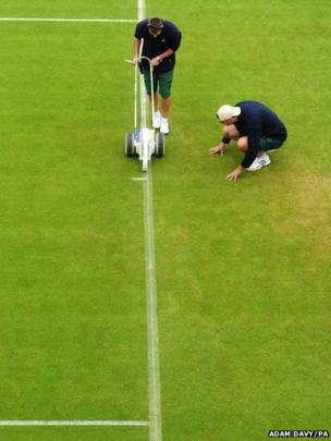 Wimbledon tennis courts are being prepared