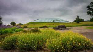 The Great Glasshouse, Carmarthenshire