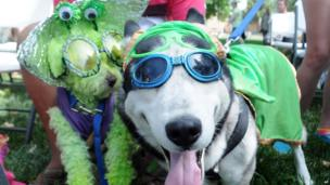 Nanook the Superdog, right, and Tobie the King of Mars, at the 2013 UFO Festival