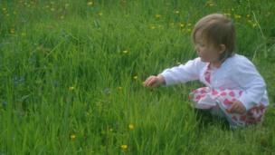 Girl picking a buttercup