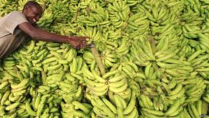 Banana market stall in Mogadishu, Somalia - Monday 8 July 2013