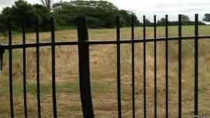 A blurred image of a field through railings