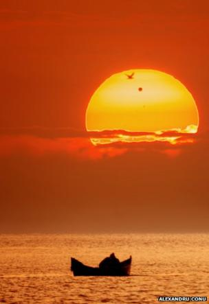 The black dot of Venus silhouetted in front of the Sun.