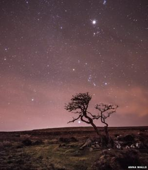 Familiar stars and constellations form a line rising up behind this windswept tree in Dartmoor National Park in the south-west of England
