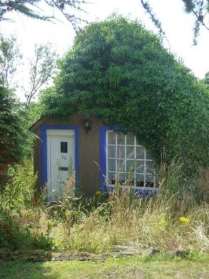 House covered in plants