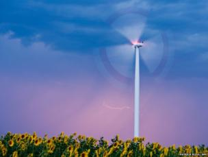 A strike of lightning illuminates the sky behind a wind turbine above a field of sunflowers near Sieversdorf, Germany