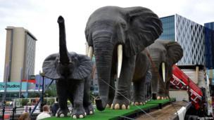 Elephants at MediaCityUK