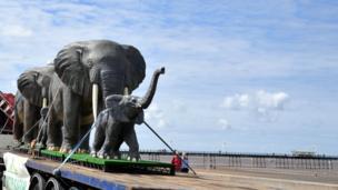 Elephants at Southport beach