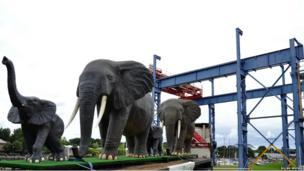 Elephants at Preston Docks