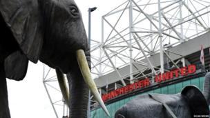 Elephants at Old Trafford