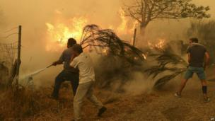 Local residents try to extinguish a wildfire at Fornelo do Monte near Vouzela, central Portugal, on 21 August, 2013