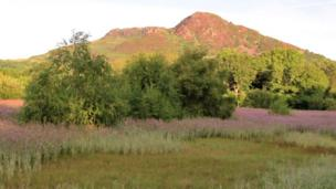 Early autumnal colour changes looking towards Moel-y-Gest