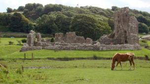 Ogmore Castle and a pony