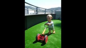 Picasso mowing