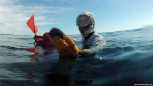 Hideko, a female skin-diver in Japan