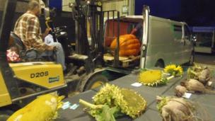 Man with forklift truck and a pumpkin