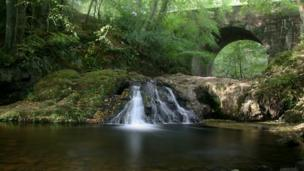 Falls at Arbirlot