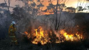 A New South Wales Rural Fire Service volunteer puts out a fire in Bell on 20 October 2013