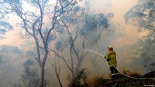Firefighter hoses down the flames in a back-burn at Faulconbridge. 22 Oct 2013