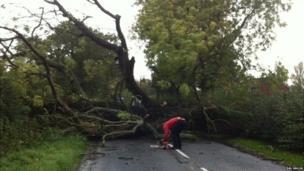 Tree fallen across road in Gloucestershire