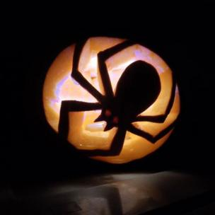 Spider pumpkin carved by the Artisans Collective CIC