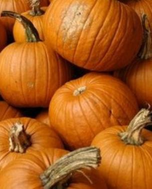 What's the difference between Hop-tu-Naa and Halloween