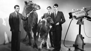 Owen Edwards filming with camels