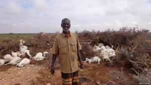 A nomad in Somalia standing in front of his dead goats
