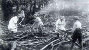 Land girls sawing logs