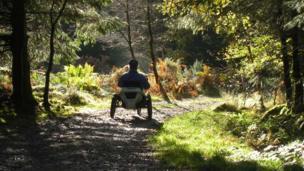 A hand-cyclist in Coed y Brenin, Gwynedd