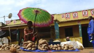 A vendor under an umbrella at Gorongosa market, Mozambique - Tuesday 19 November 2013
