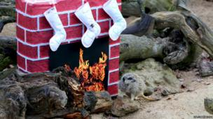 A meerkat next to a faux fireplace with stockings on it.